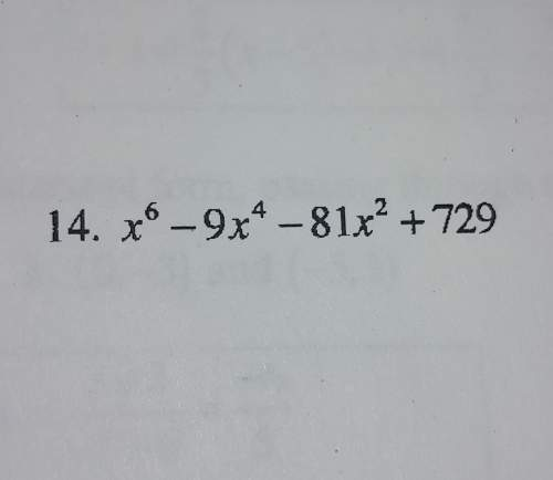 How do i factor the following expression?