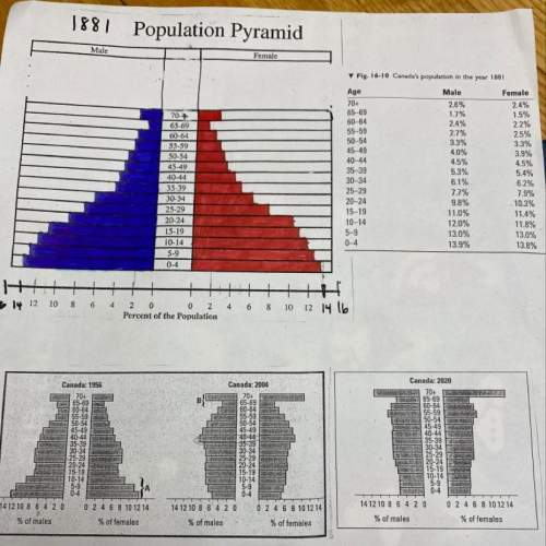 1.) look closely at the pyramid for 1881 a) explain with details why the proportion of t