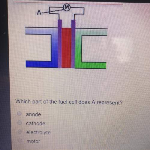 Which part of the fuel cell does a represent...</a></div><div class=